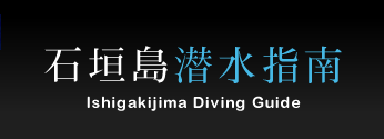 石垣島潜水指南 -Ishigakijima Diving Guide-